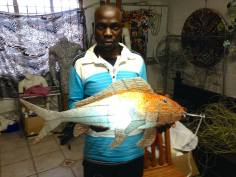 During my internship in Durban, South Africa I asked Samuel to make this fish lamp for me.